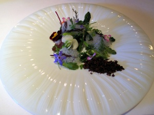 Manresa - Into the vegetable garden…