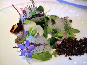 Manresa - Into the vegetable garden… 4