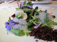 Manresa - Into the vegetable garden… 2