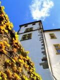 Schloss Berg 2
