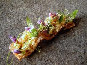 Noma - Toast, vilde urter, pighvarrogn og eddike 2