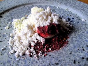 Noma - Valnødde pulver og is; Tørret fløde og tørrede bær 2