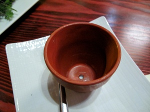 Ubuntu - the spring FLOWER POT - plat vide